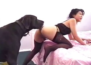 Black animal and passionate sexy amateur