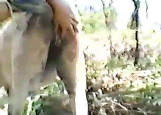 Close-ups and more in a bestiality vid