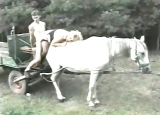 Gorgeous couple fucking on a sexy white horse