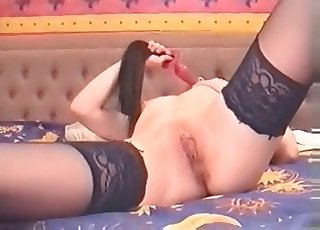 Stockings-wearing bitch is ready for oral