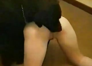 Sexy and enjoyable homemade zoophilic porn XXX