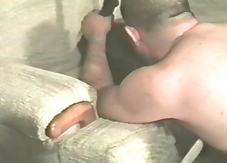 Sexy animal is getting a great deepthroat blowjob