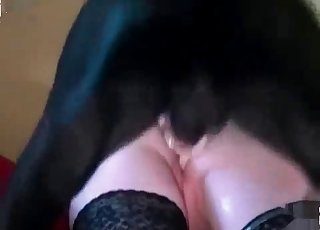 Hot blonde is having sex with a dog