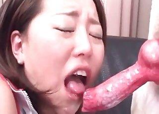 My Japanese zoophilic whore