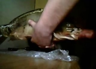 Dude face-fucking a goddamn fish